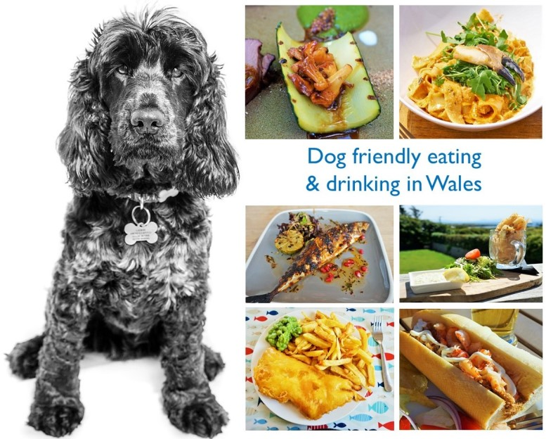 Dog friendly eating & drinking in Staffordshire | Moorlands